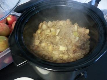 Apple Pie Oatmeal in the Crockpot